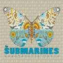 The Submarines - Honeysuckle Weeks