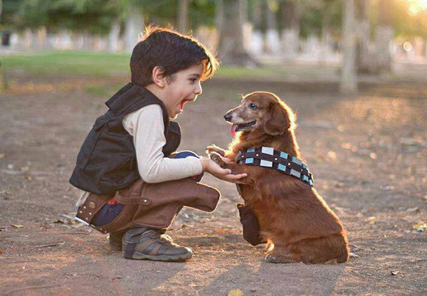r-Han-and-Chewie