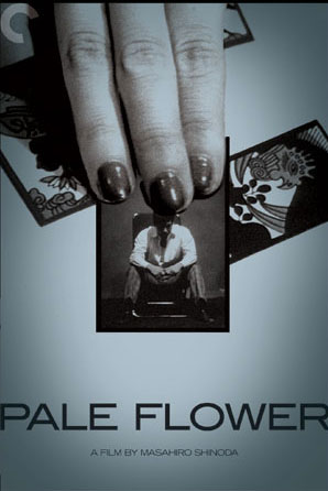 tf-pale_flower-criterion